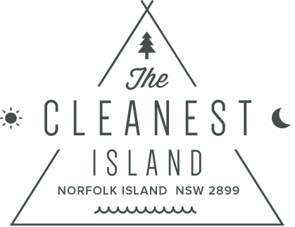 The Cleanest Island
