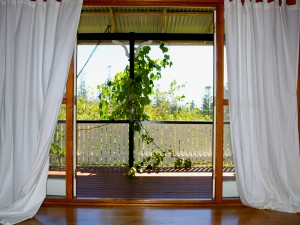 Looking Out To Patio